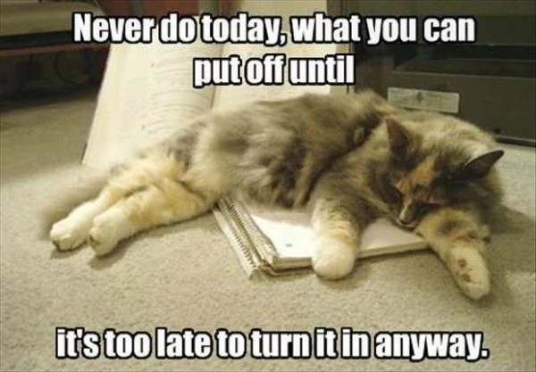 "Sleepy procrastination cat says, ""Never do today what you can put off until it's too late to turn it in anyway."""