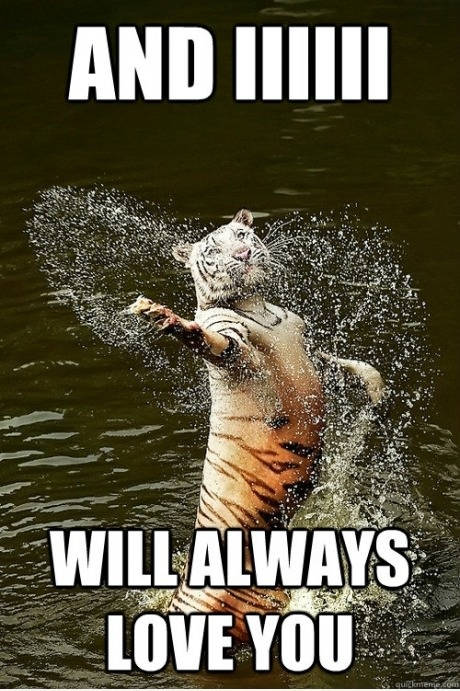 "Whitney Houston Tiger sings, ""And IIIIII... will always love you."""