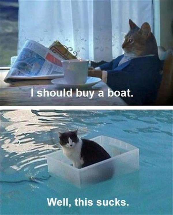 "Cat says, ""I should buy a boat."" Gets one. ""Well, this sucks."""